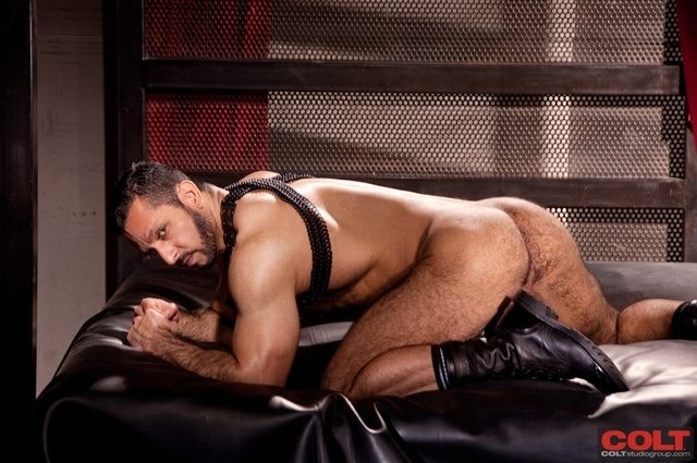 Hairy-muscle-bottom-Adam-Champ-ass-fucked-huge-hairy-cock-Jessy-Ares-Colt-Studios-02-photo