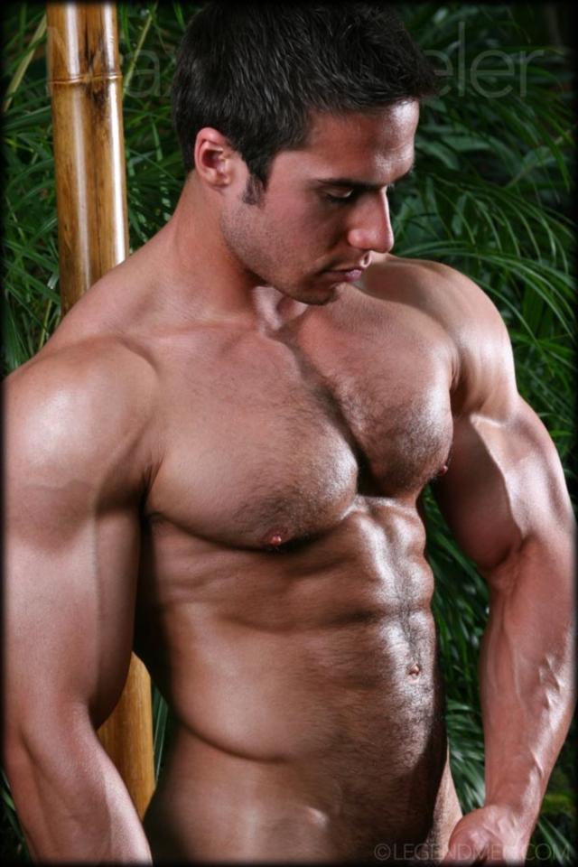 Max-Wheeler-Legend-Men-Gay-Porn-Stars-Muscle-Men-naked-bodybuilder-nude-bodybuilders-big-muscle-huge-cock-11-gallery-video-photo
