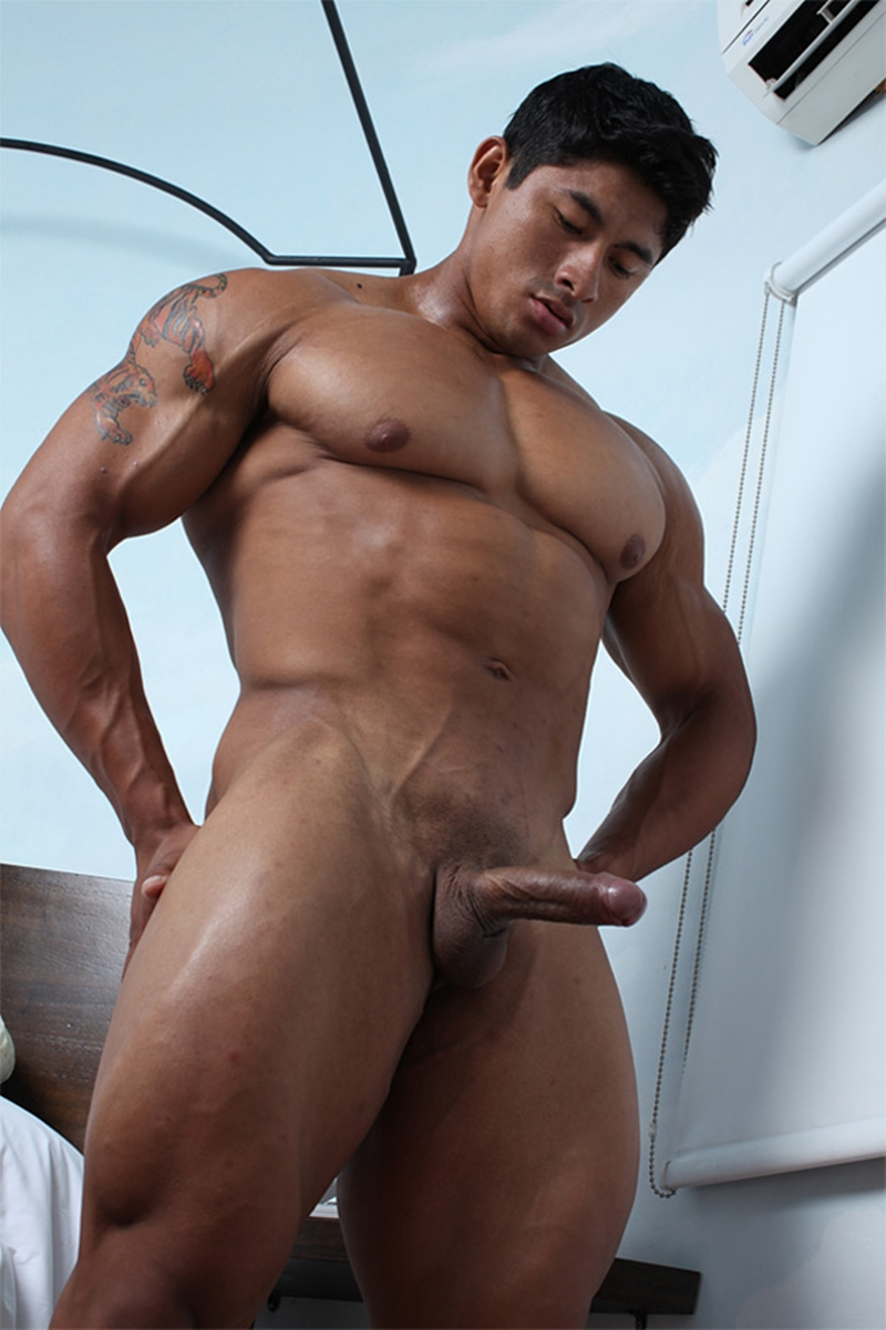 Asian muscle and dick movietures gay first 9