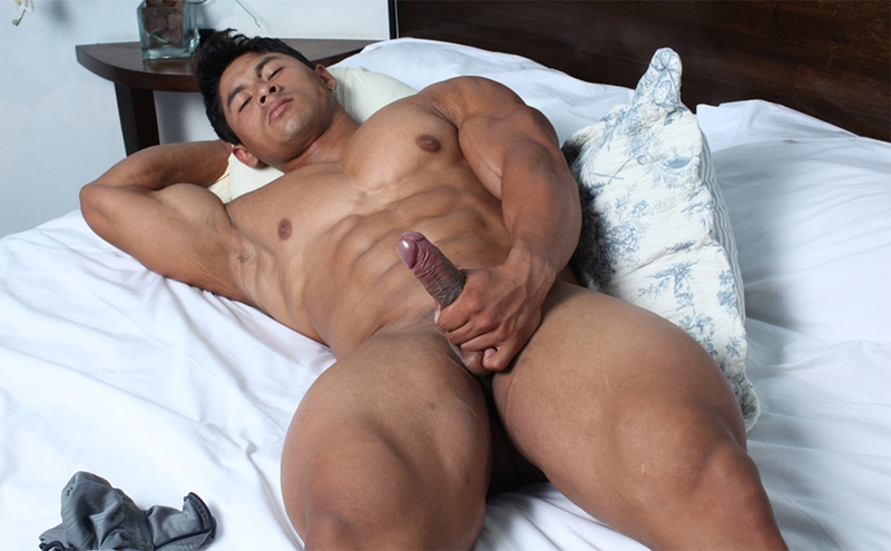 Asian gay muscle cock tube