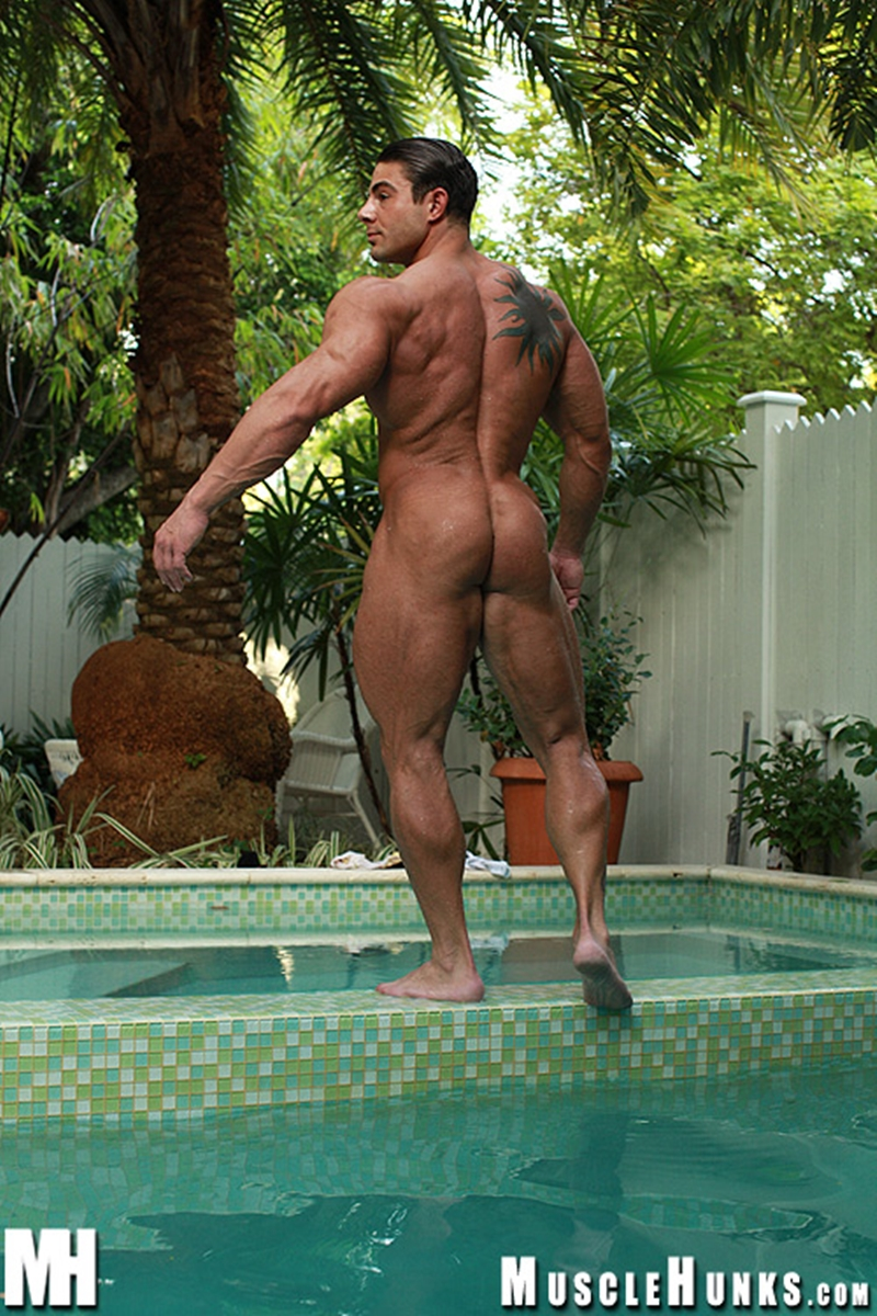 MuscleHunks-Massive-big-muscle-man-Rocco-Martin-naked-bodybuilder-ripped-chest-six-pack-abs-curved-dick-rock-hard-wanks-014-tube-download-torrent-gallery-sexpics-photo