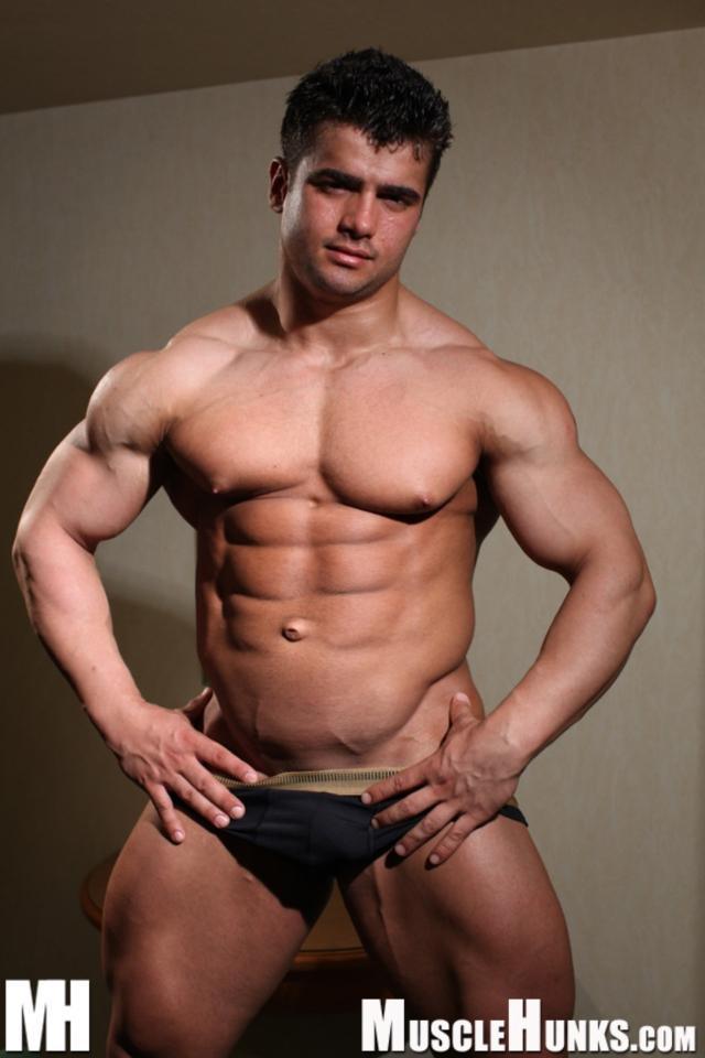 Best of Israeli Muscle