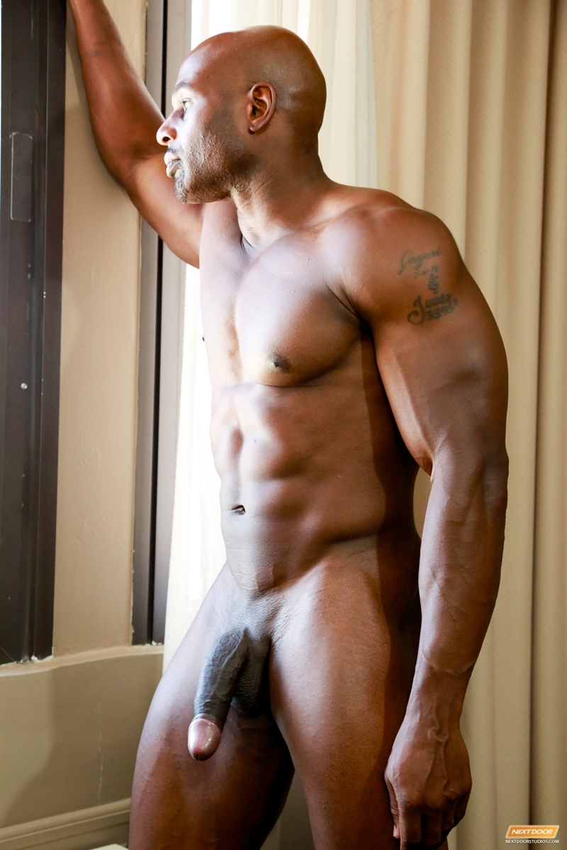 from Adonis black gay tube video sites