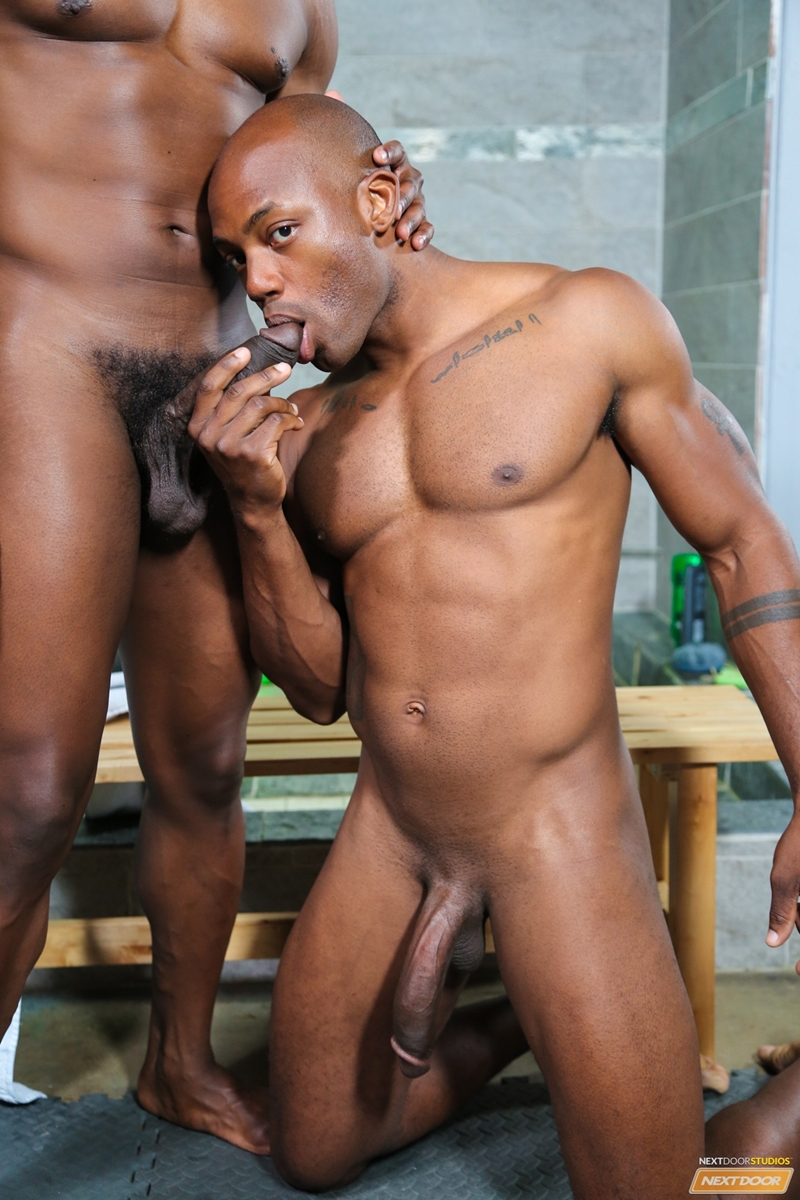 Ebony gays love deep fucking
