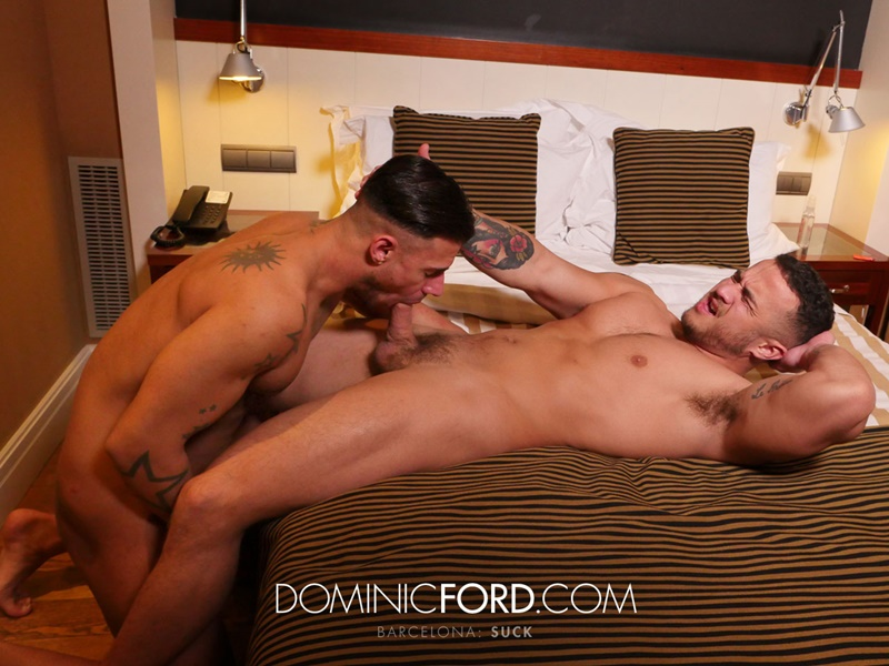 Hot gay guys enjoys sucking fucking