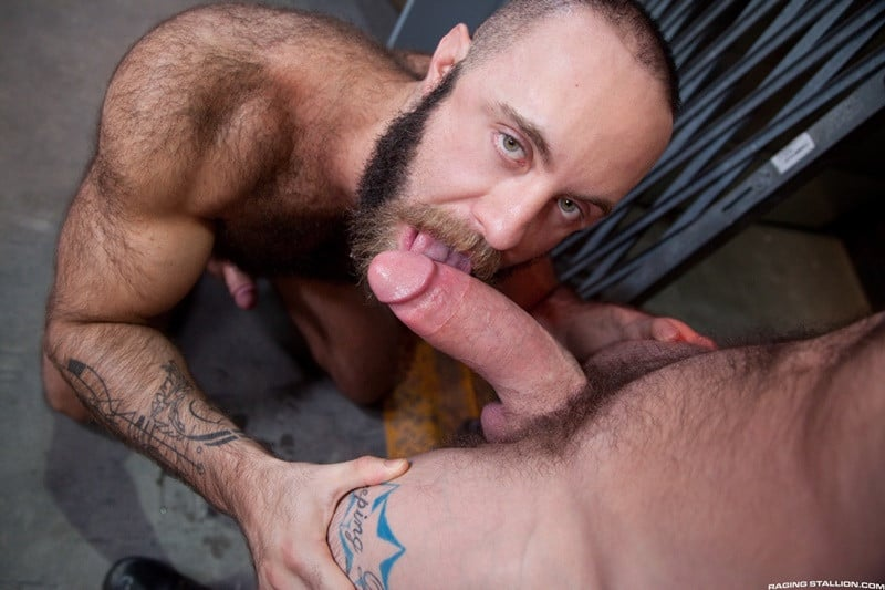 Men for Men Blog RagingStallion-hairy-chest-hunk-naked-muscle-man-Teddy-Bear-Sergeant-Miles-massive-thick-cock-sucking-001-gallery-video-photo Teddy Bear chokes and slobbers on Sergeant Miles' massively thick cock Raging Stallion  tongue Teddy Bear tumblr Teddy Bear tube Teddy Bear torrent Teddy Bear RagingStallion com Teddy Bear pornstar Teddy Bear porno Teddy Bear porn Teddy Bear penis Teddy Bear nude Teddy Bear naked Teddy Bear myvidster Teddy Bear gay pornstar Teddy Bear gay porn Teddy Bear gay Teddy Bear gallery Teddy Bear fucking Teddy Bear cock Teddy Bear bottom Teddy Bear blogspot Teddy Bear ass Streaming Gay Movies Smooth Sergeant Miles tumblr Sergeant Miles tube Sergeant Miles torrent Sergeant Miles RagingStallion com Sergeant Miles pornstar Sergeant Miles porno Sergeant Miles porn Sergeant Miles Penis Sergeant Miles nude Sergeant Miles naked Sergeant Miles myvidster Sergeant Miles gay pornstar Sergeant Miles gay porn Sergeant Miles gay Sergeant Miles gallery Sergeant Miles fucking Sergeant Miles Cock Sergeant Miles bottom Sergeant Miles blogspot Sergeant Miles ass ragingstallion.com RagingStallion Tube RagingStallion Torrent RagingStallion Teddy Bear RagingStallion Sergeant Miles raging stallion premium gay sites Porn Gay nude RagingStallion naked RagingStallion naked man jockstrap jock hot naked RagingStallion Hot Gay Porn hole HIS gay video on demand gay vid gay streaming movies Gay Porn Videos Gay Porn Tube Gay Porn Blog Free Gay Porn Videos Free Gay Porn face Cock cheeks cheek ass